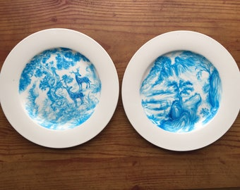 Hand painted Porcelain plates