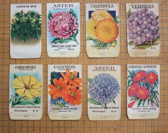 8 Vintage Unused Lithograph Flower Seed Packets 1918
