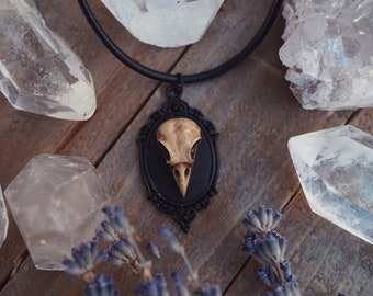 Raven Skull Necklace , Gothic Necklace, Crow Necklace, Unusual Gift - Halloween