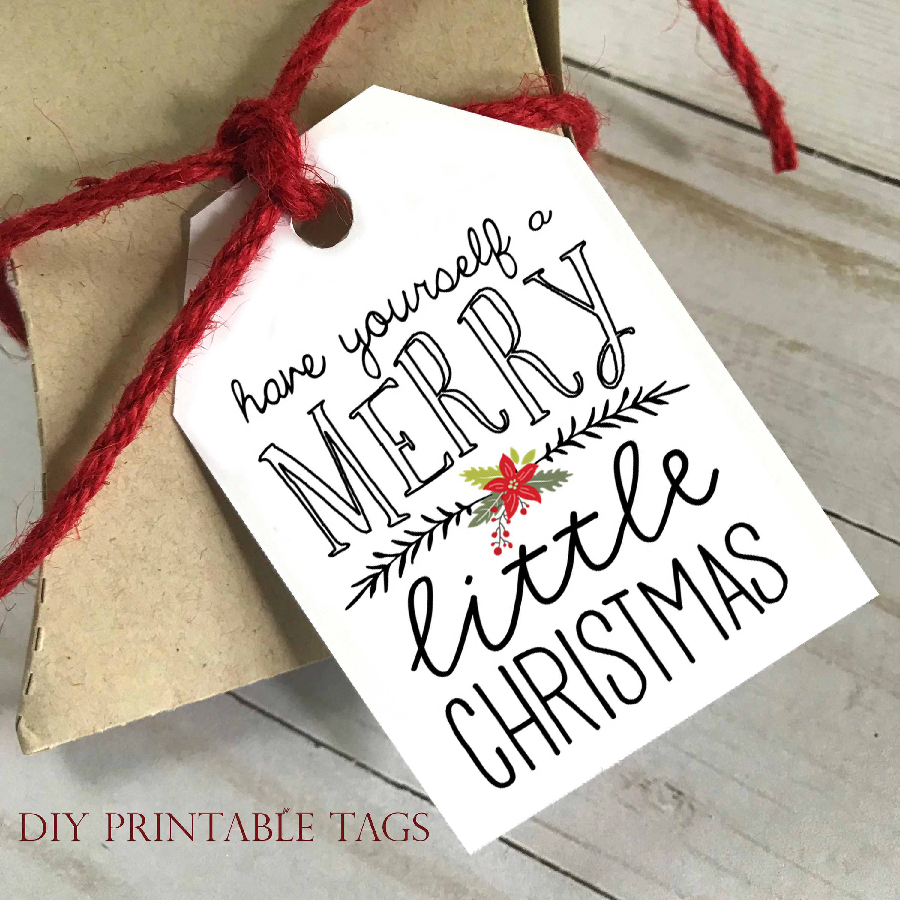 Diy printable tags have yourself a merry little christmas diy printable tags have yourself a merry little christmas printable christmas gift tags holiday gift tags gift tags solutioingenieria Gallery