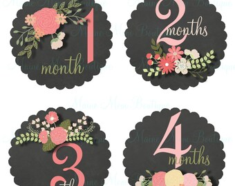Baby Girl Month Stickers, Baby Girl Monthly Stickers, Pink Coral Mint  Floral Flowers  Nursery Decor  Bodysuit, Baby Photo Prop