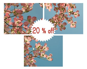 Pink dogwood flower wall art set of 3 prints, floral branch art, photos or canvas, blue pink baby girl room decor nursery wall art pictures