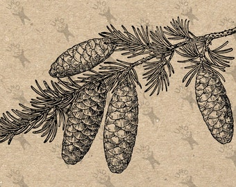 Image Tree Pine Pine cone Instant Download picture Digital printable vintage clipart graphic  Burlap Fabric Transfer Iron On Pillows 300dpi