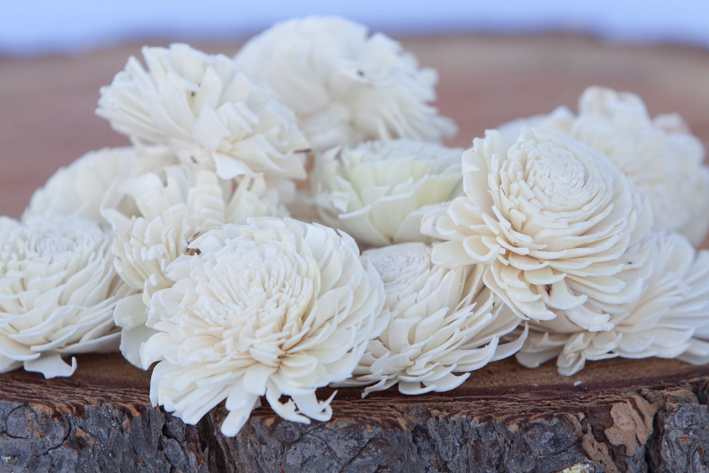 Chorki Sola Flowers - SET OF 10 , Chorki, Sola, Wood Sola Flowers ...