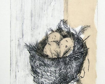 NEST  3/15    -    original fine art print,  inviting egg filled, nest etching, delicate hand rubbed lines
