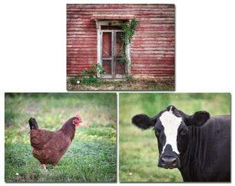 Farm Photography Farmhouse Decor Country Kitchen Wall Art Rustic Barn Cow Picture Set Fixer Upper Style Prints Canvas 24x30 20x24 16x20