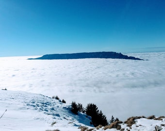 The tooth of the cat in the sea of clouds