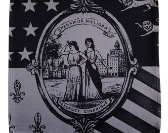 Vintage Detroit City Flag Pocket Square. Speramus Meliora and Resurget Cineribus, Latin motto pocket square. Detroit gift, Michigan gift.