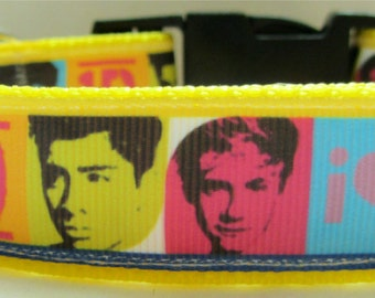 One Direction inspired Dog Collar