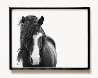 Icelandic horse print, PRINTABLE art, Black and white art, Horse decor, Horse photography,  Minimalist art, Modern print, Wild horse print