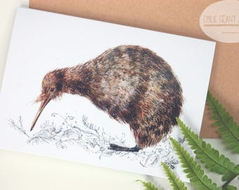 Kiwi folded card from the New Zealand native birds series by Emilie Geant, from original watercolor painting