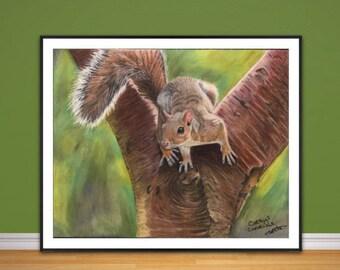 Squirrel fine art print, coloured pencil Squirrel drawing, fine art Giclee print, squirrel painting, original wildlife art