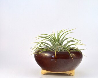Air Plant Holder, Vintage Art Pottery, Small Stoneware Bowl, Ceramic Planter, Round Bowl, Succulent Planter, Vintage Home Decor