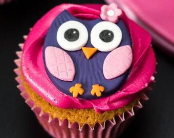 2D Sugarpaste owl Cupcake toppers