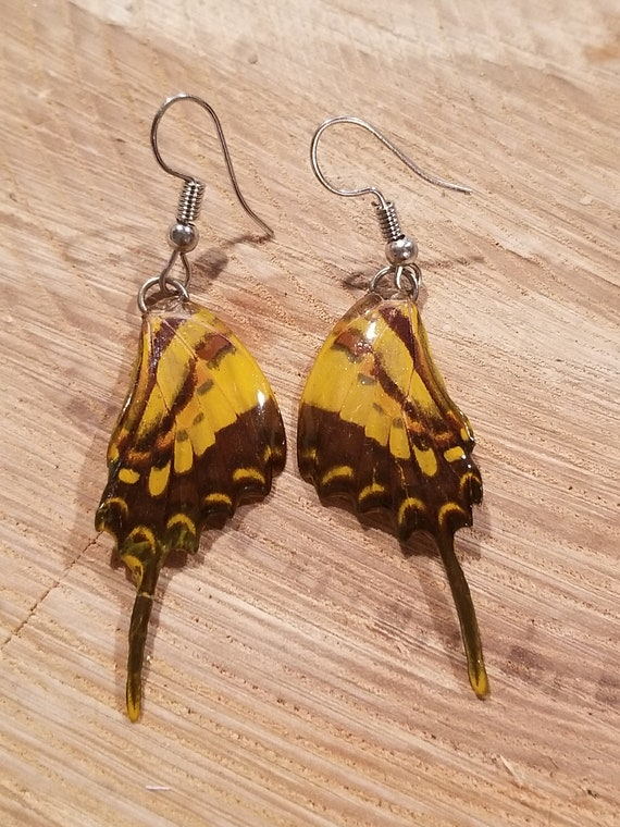 Real Butterfly Wing Earrings Preserved In Resin Nature Women Jewelry Boho Chic Natural Earth Fashion Art (E225)
