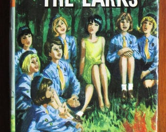 The Rising of the Larks by Cris Johnson - Vintage Girl Guide story