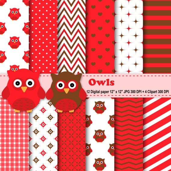 red owl personals See more ideas about the birds, barn owls and exotic birds  red owl: also  known as the madagascar red owl, madagascar grass-owl and soumange's owl- .