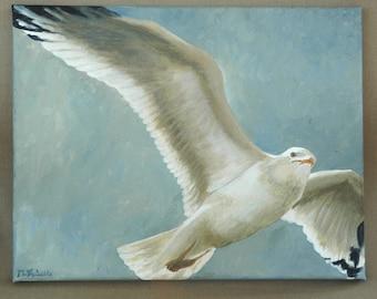 "Seagull in Flight Original Acrylic Painting 11"" x 14"""