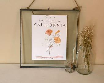 California State Flower Watercolor Print
