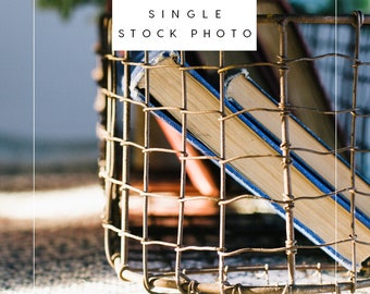 Styled Stock Photo | Antique Books in Wire Basket