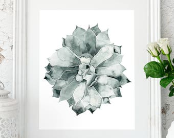 Cactus decor, Cactus prints, Wall art, Botanical prints, Printable Cactus art, Botanical cactus, Succulent print, Cactus art ideas,