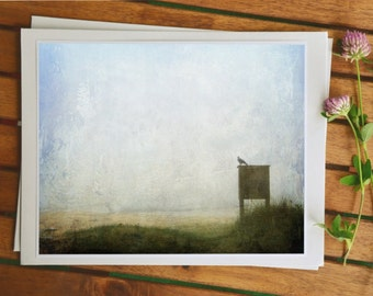 Vogel-Fotografie, Rabe Foto, Naturfotografie, Kunstdrucke, Foto Gemälde, 5 x 7 Foto, Wohnkultur