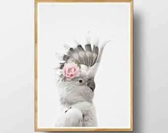 Galah  Print,  Australian Bird Print, Australian Bird Wall Art,  Australian Animal Print,  Cockatoo, Nursery Printable, Watercolour Flower