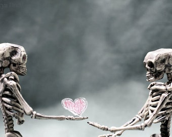 Take it, its yours 3 - FREE SHIPPING Still Life Fine Art Surreal Photography Skeletons Love Pink Red Heart Bones Lovers Creepy Wall Decor