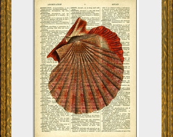 Dictionary Art Print - ORANGE SEA SHELL- an upcycled antique dictionary page with a retooled antique ocean illustration - vintage wall decor