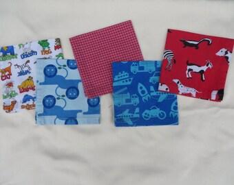 Set of 5 Lunchbox Napkins