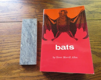 Bats by Glover Morrill Allen Dover Publications inc.  1962