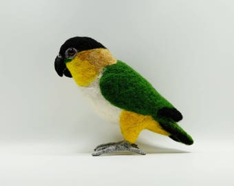 Needle felted Black-headed Caique, fiber sculpture, bird art figurine Black-headed Parrot