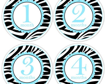 Instant Download - Baby Month to Month Stickers, Zebra Monthly Birthday Stickers for Baby, Zebra Print Photo Prop Birthday Stickers