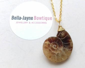 Natural Ammonite Fossil shell pendant stunning on gold chain unusual quirky gifts