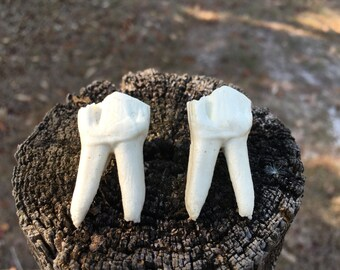 Cow Tooth Replica Pins
