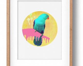Okay Luna 'Parrot' Print A4