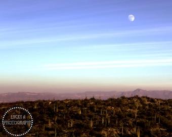 Arizona Desert Scenery Photography Print