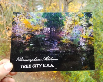 Fall on The Little Cahaba River Postcards