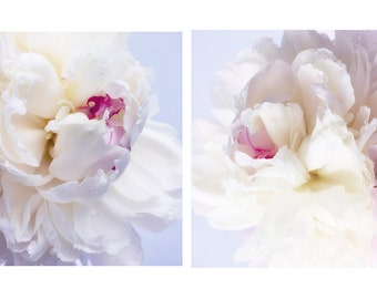 Two Peony Prints Set, White Pink Flower Wall Art, Peony Photographs, 11 x 14, 8 x 10, 16 x 20