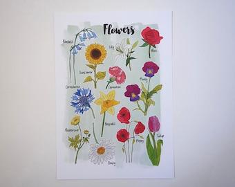 Flower Nature Print