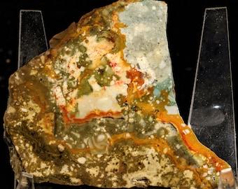 Beautiful Rocky Butte Jasper Slab