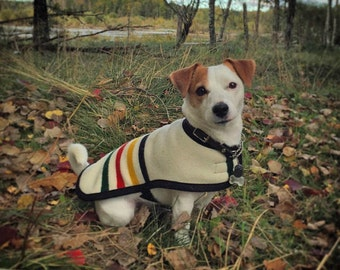 Wool Dog Coat handcrafted of Glacier National Park Blanket fabric - Warm Dog Coat - wool dog jacket wool dog sweater medium