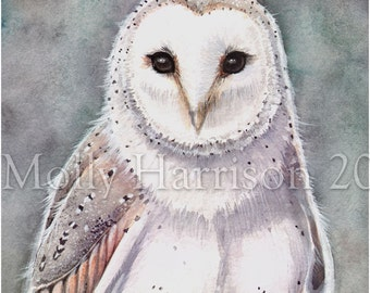 Barn Owl Wildlife Watercolor Fine Art Print by Molly Harrison 8 x 10