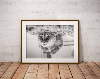 cat art print , cat lover gift , cat wall art , funny cat print , cat poster , black and white , instant download