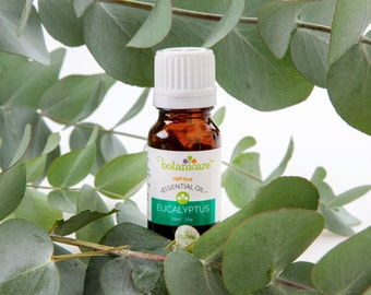 Eucalyptus Essential Oil Therapeutic Grade 100% Pure 10ml/.33oz by Botanicare