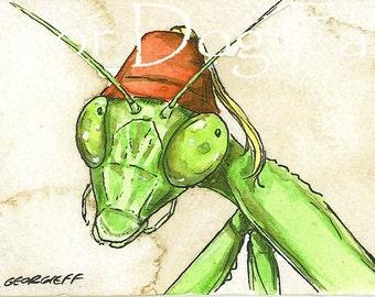 Praying Mantis in a Fez- 5 x 7 print