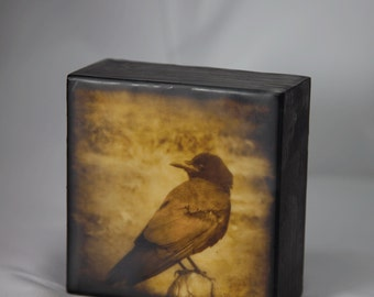Gold Black Crow Encaustic Photograph on Wood Panel--You Lookin' At Me?--4x4 Fine Art