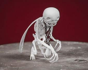 Tooth Fairy Skeleton 3D Print Taxidermy
