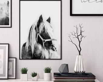 Horse Wall Art, Horse Print, Horse Art, Printable Wall Art, Digital Download