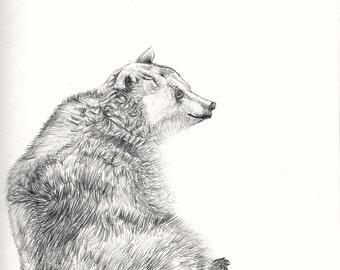 This is Bear, digital print from an original pen drawing